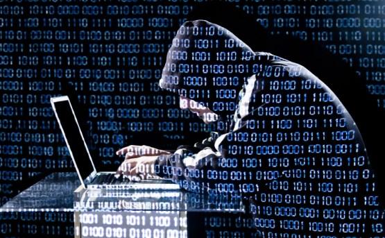 Siber Tuzaklarla Mücadele